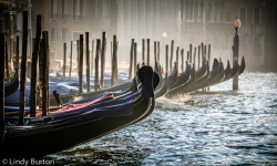 Gondolas on the Grand Canal