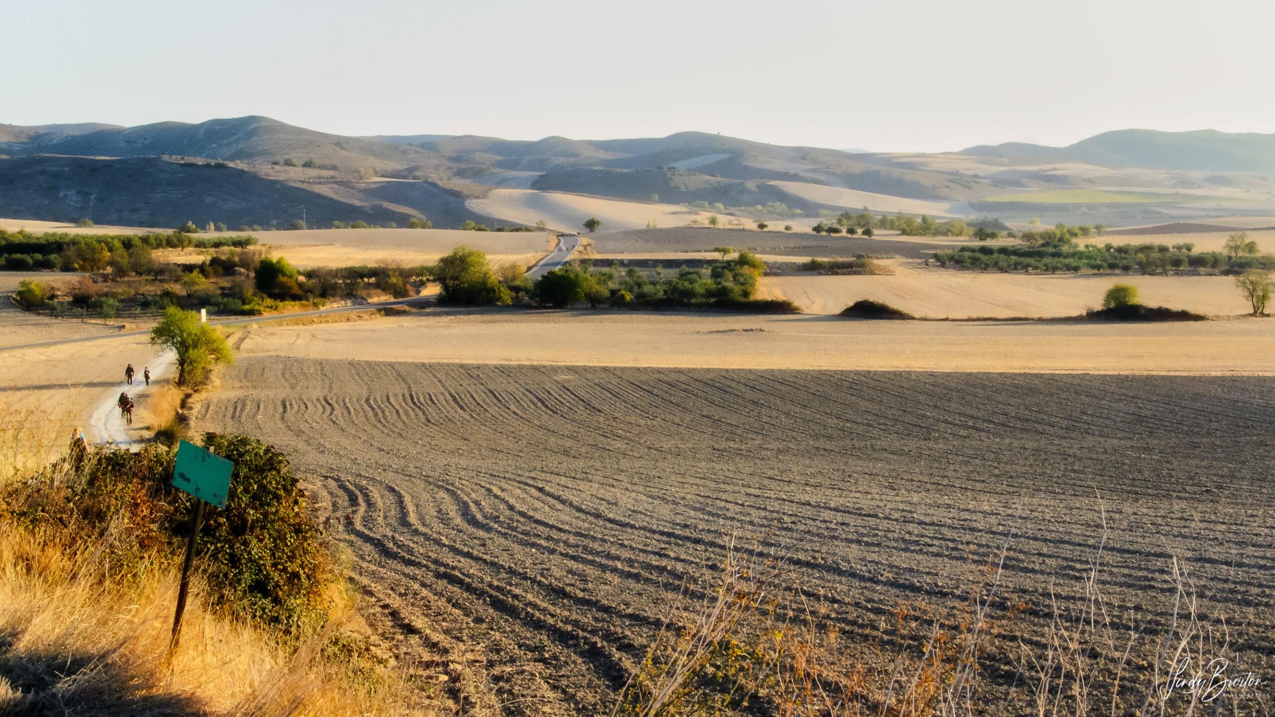 Camino Frances Pilgrims & Fields Between Los Arcos & Viana Spain