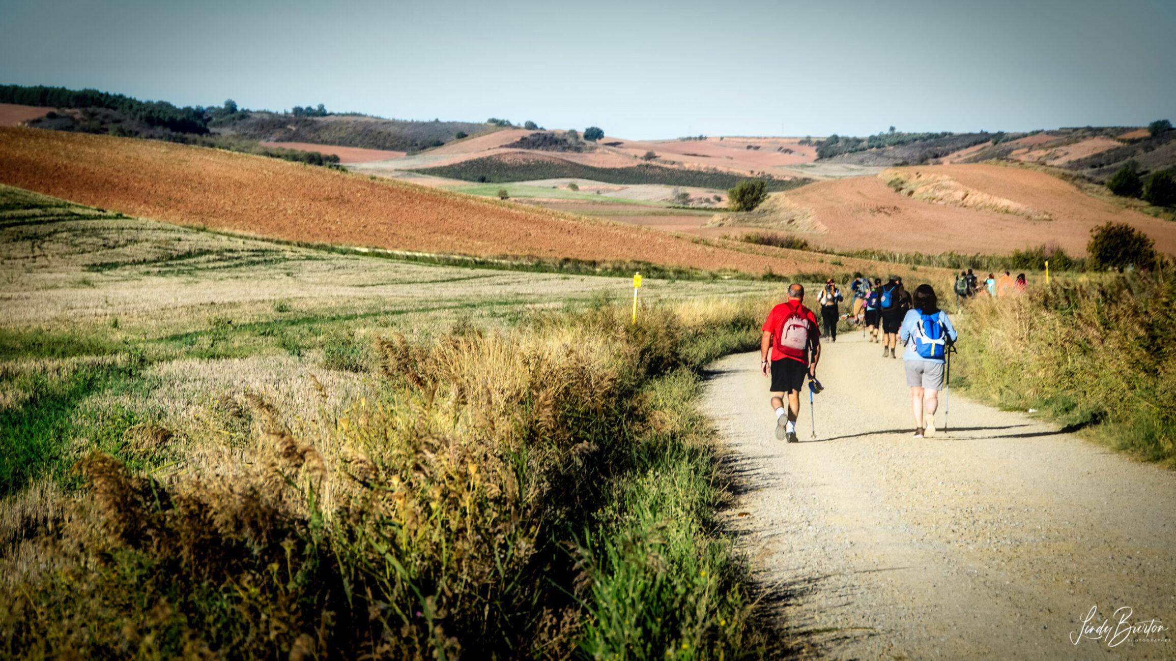 Camino Frances Pilgrims On the Road between Najera & Santo Domingo de la Calzada Spain